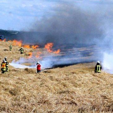 Großer Flächenbrand bei Rodenbach