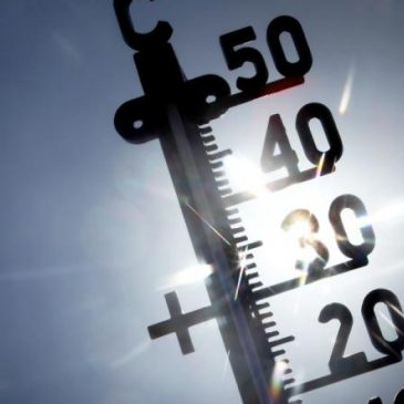 Gefährliche Sommerhitze